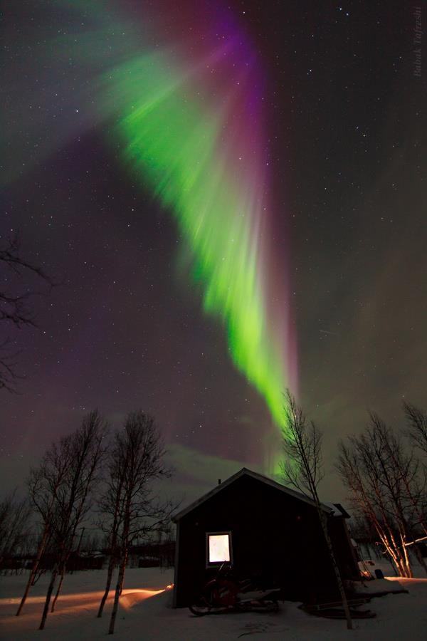 a northern lights lapland