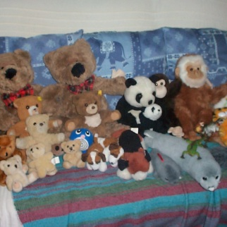 Teddy family