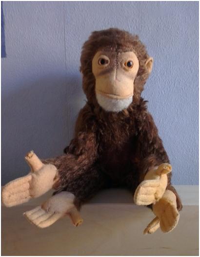 "My monkey ""Yoko"""