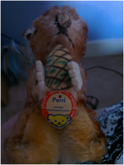 "My squirrel ""Perry"" with his original label"