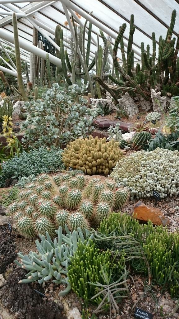 barbican garden (11)
