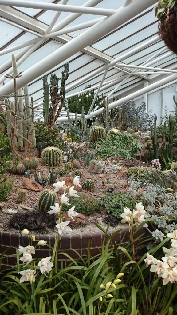 barbican garden (12)