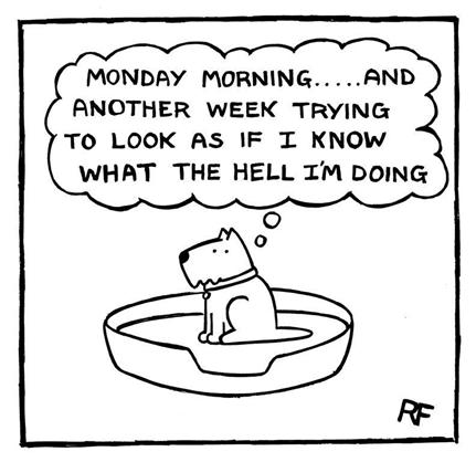 dog-fun