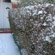 snow 28.2.to1.3 (10)