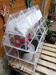 green house (4)