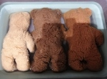 teddy b (10)