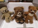 teddy b (3)